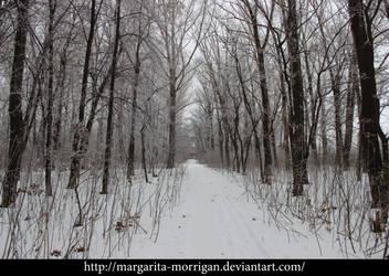 winter background5 by margarita-morrigan