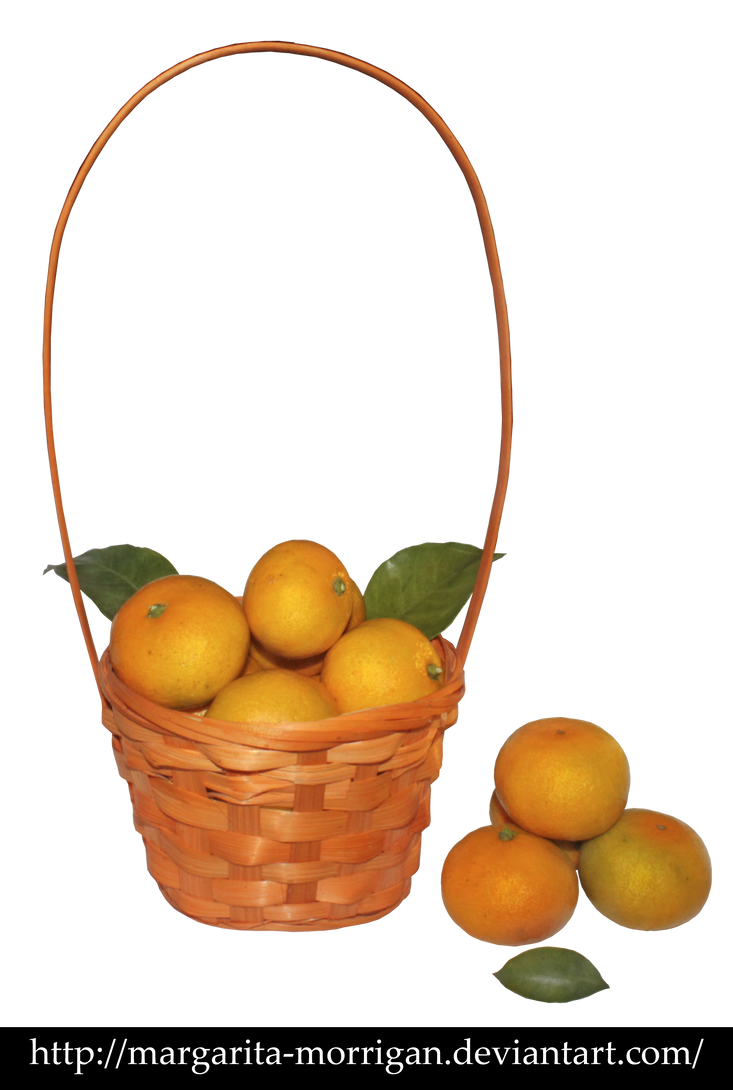 Fruit basket by margarita-morrigan