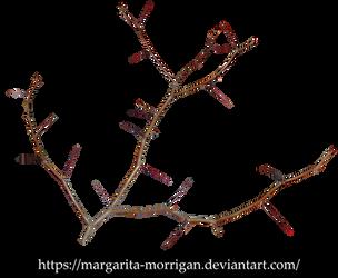 Thorns by margarita-morrigan