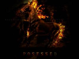 P O S E S S E D .sec version. by BaukjeSpirit