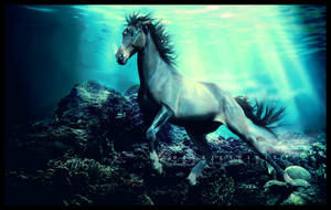 the sea horse by BaukjeSpirit