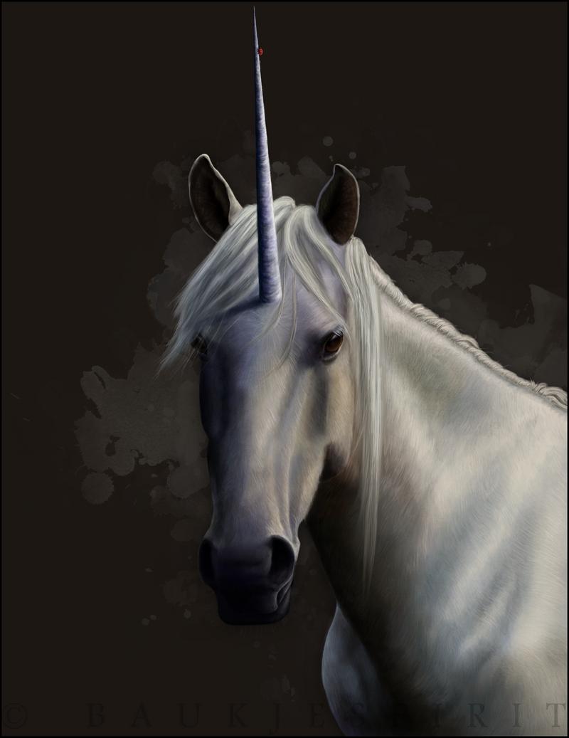 [Image: another_unicorn_by_baukjespirit-d30vqqn.png]