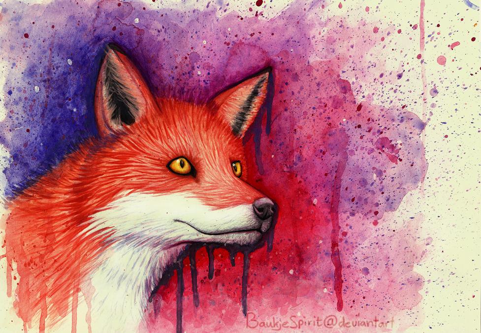 fox by BaukjeSpirit