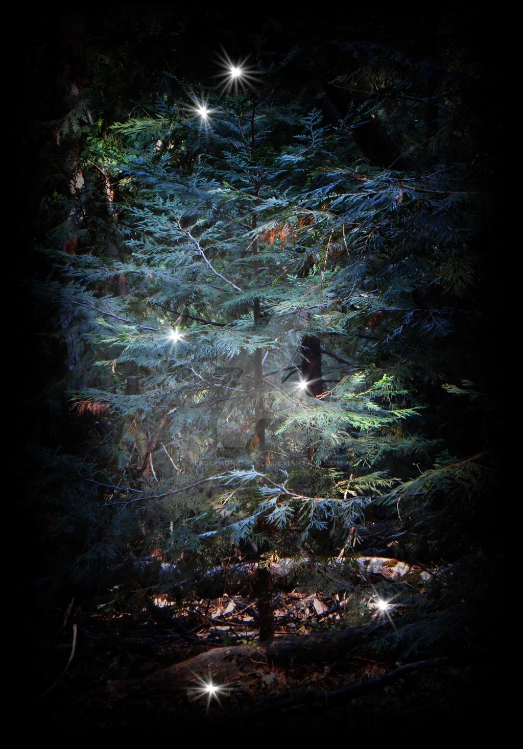 Fairy Tree by Persephonesplace