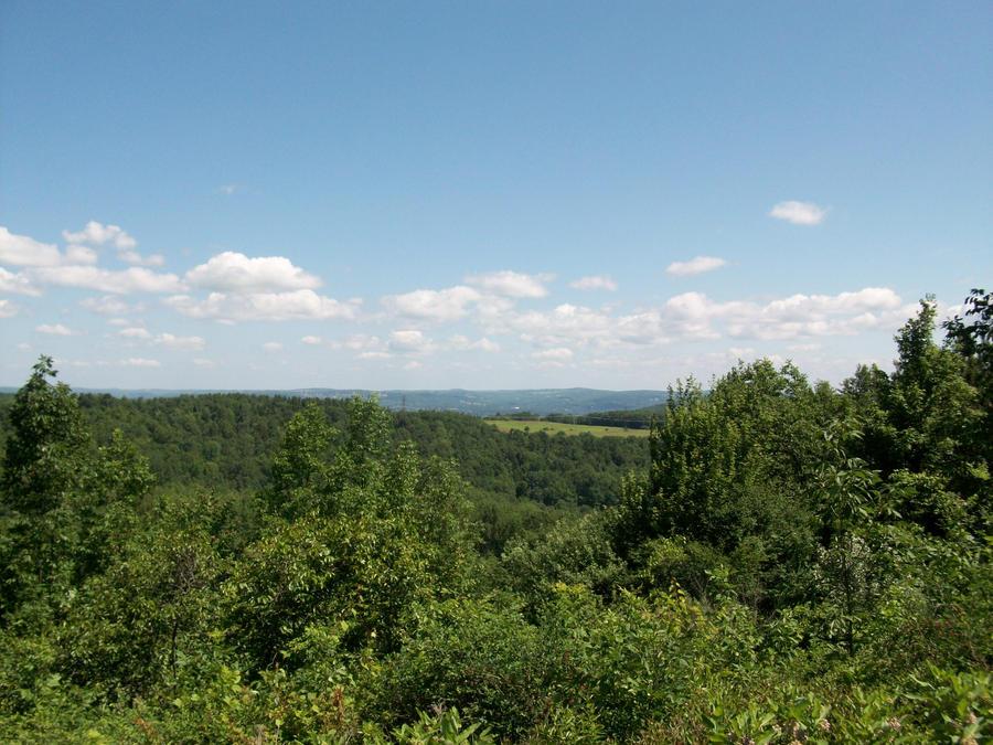 Hillside View by RyosukeHikashu