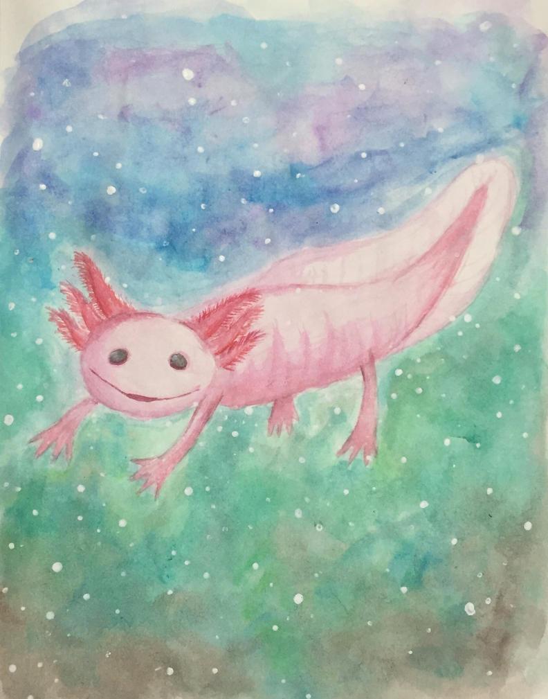 Axolotl  by Luna-Miau