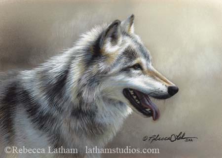 Mist of Light - Timberwolf