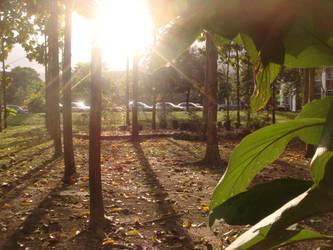 Outside paradise, starts civilization.