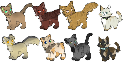 Warrior Cat Adopts by StudioFelidae