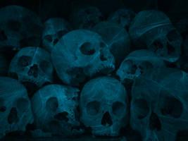 Skulls by nara6200