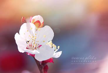 Electric Bloom by deerArylide
