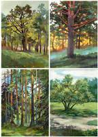 Gouashe landscapes by JuliaTar