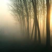 Dreams running parallel by MarioDellagiovanna