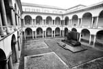 Universitas Studiorum VIII