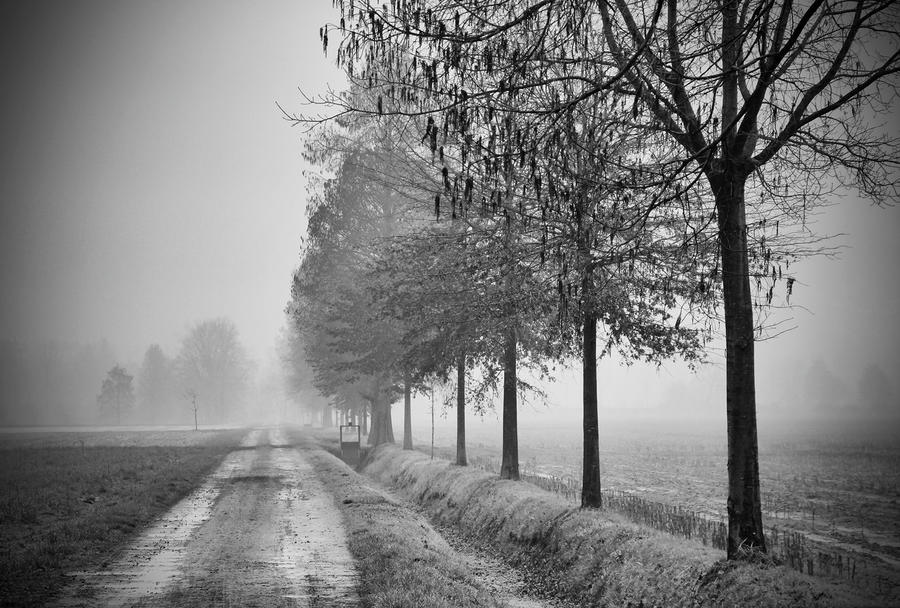 Inverno insidioso by MarioDellagiovanna