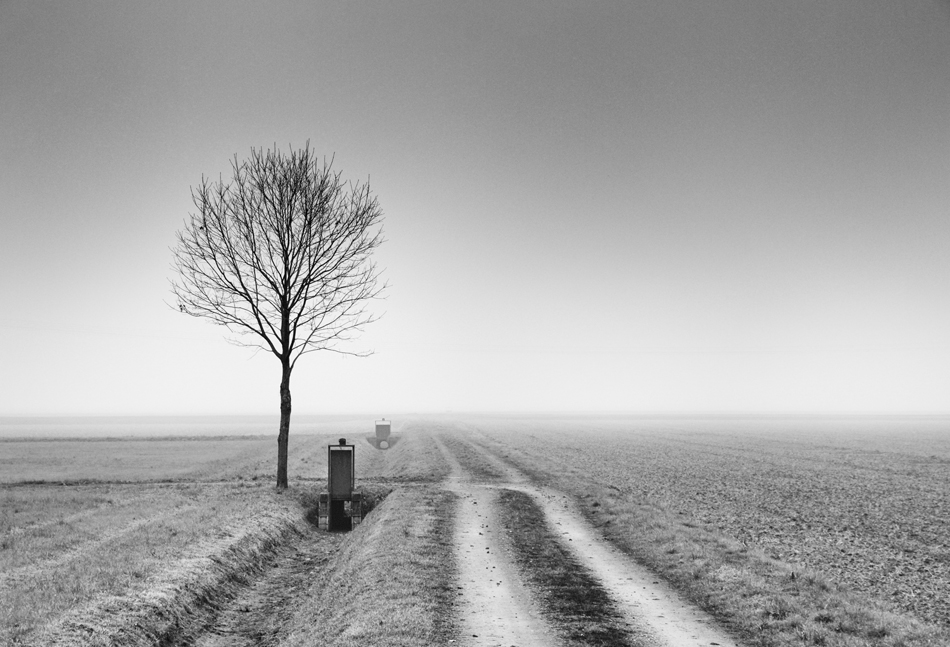Winter Horizon by MarioDellagiovanna