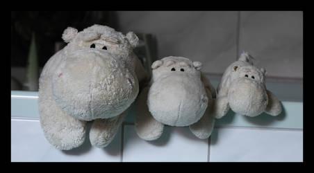 Hippo washday by Taku-Aoi