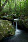 Jake's Creek Trail