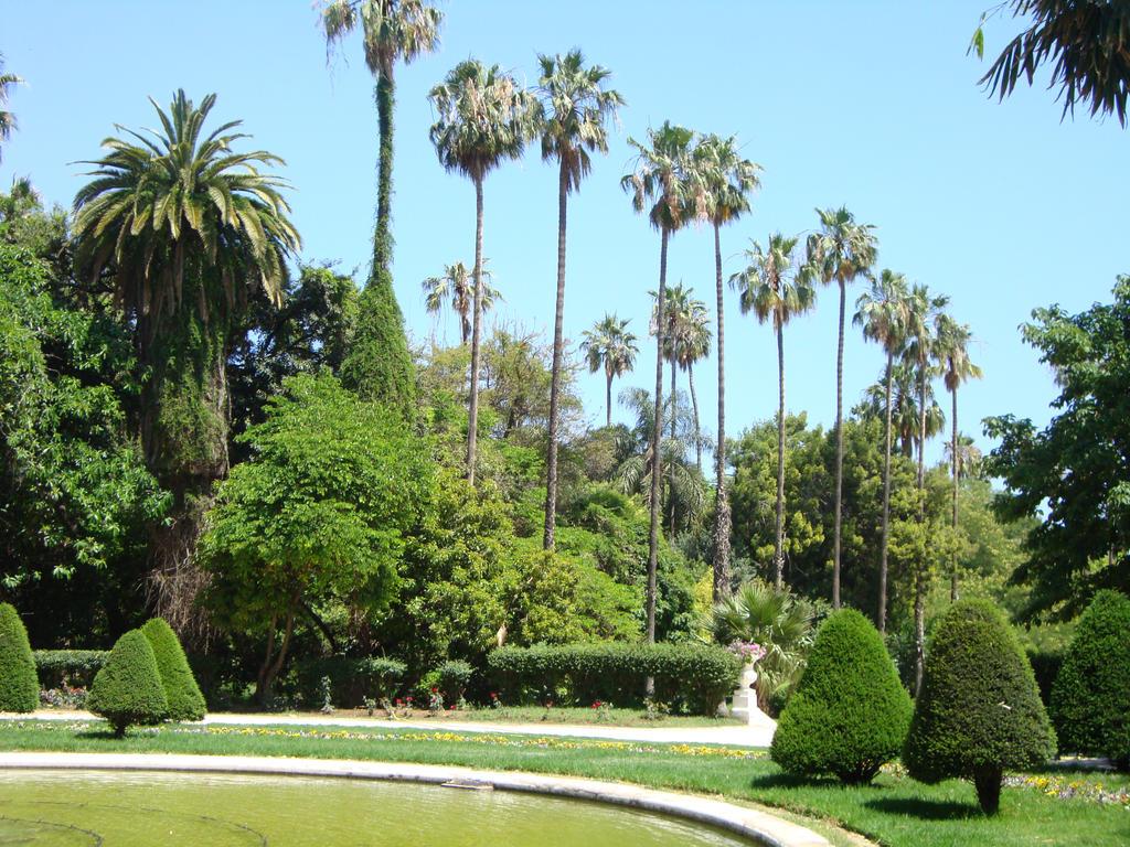 Jardin d 39 essai alger by drouch on deviantart for Jardin olof palme alger