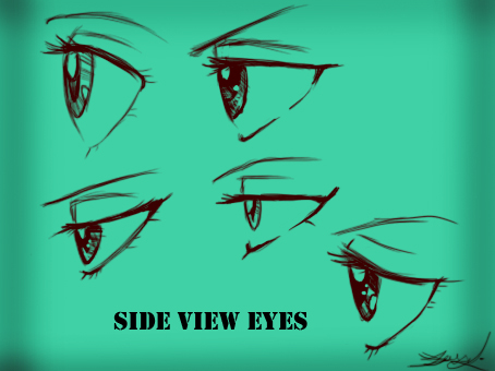 Side View Eyes (Female) by Kira09kj on DeviantArt