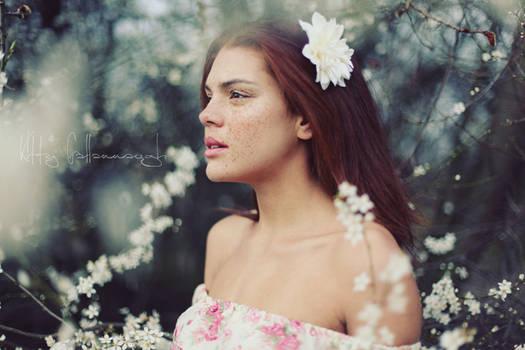 freckled petals