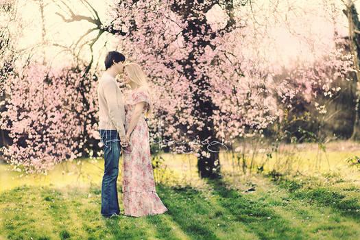 blossomkisses