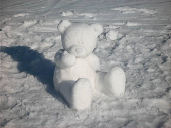 Snow bear by shaneandhisdog