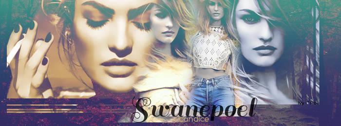 Candice Swanepoel Timeline