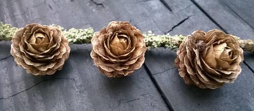 Triplets by VictoriaMuon