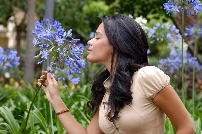 Smelling Flower by GildeAranadotcom