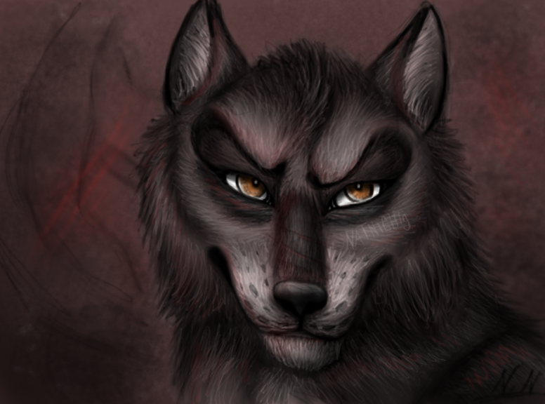 The wolf by NatNight9