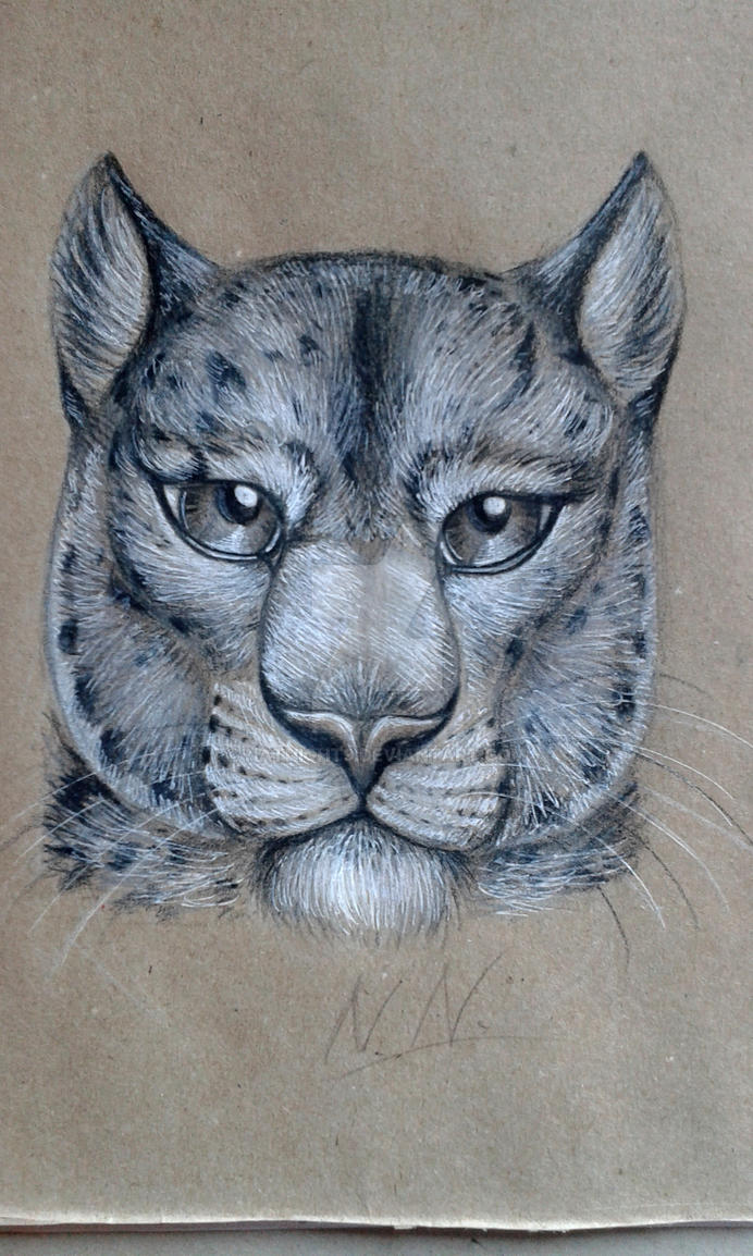 Leopard by NatNight9