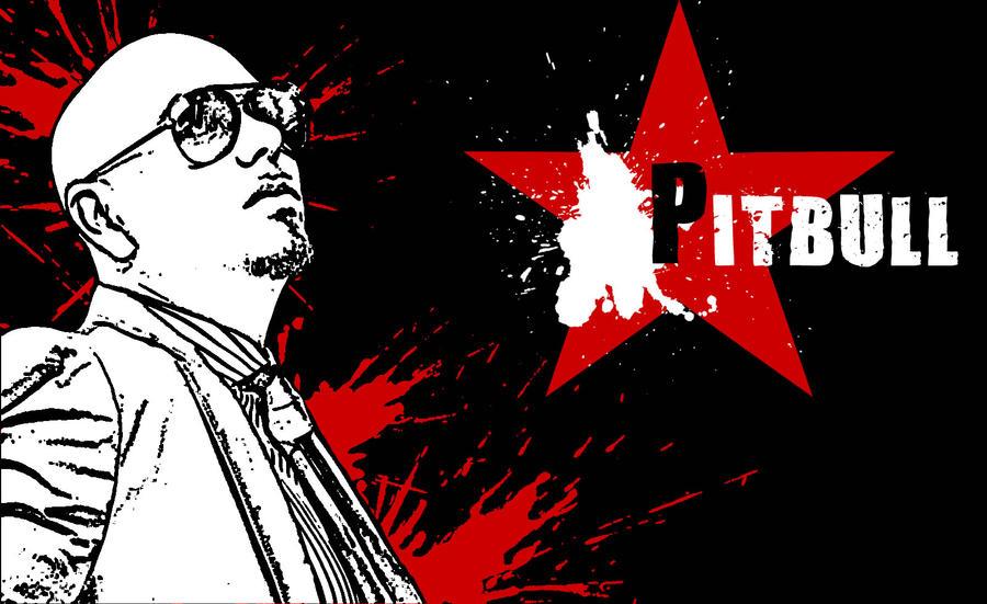 Pitbull Wallpaper By Salvas On DeviantArt