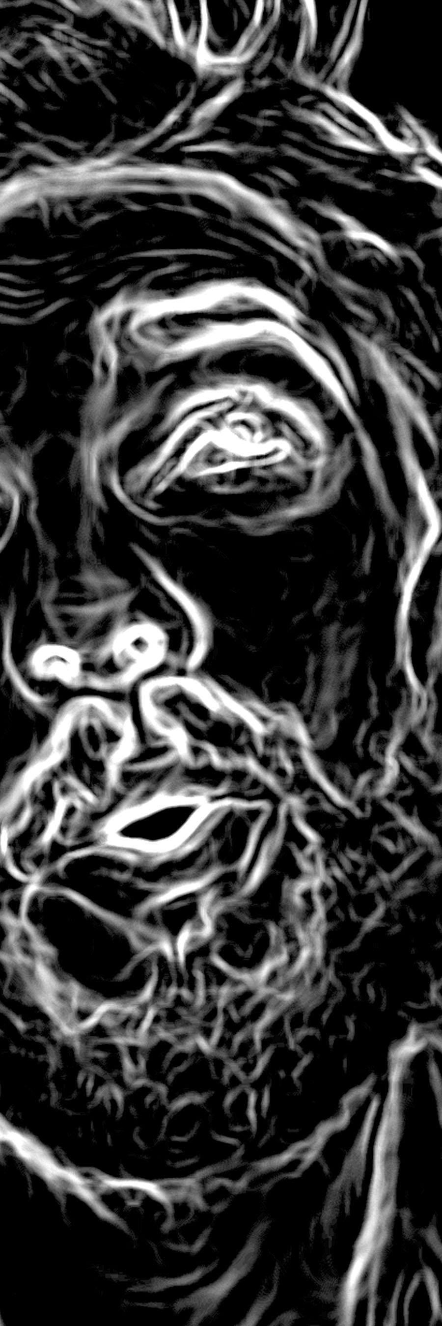 Famous Expressive Line Art : Expressive line black by redghostman on deviantart