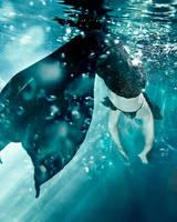 Underwater... by SarahInTortureland