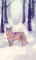 not a coyote by SLAREN