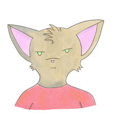 Meh Cat by MysteriousMystery01