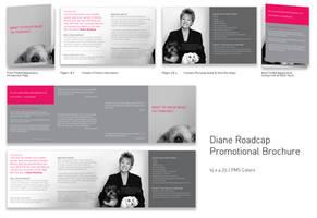 Diane Roadcap Brochure by TheRyanFord