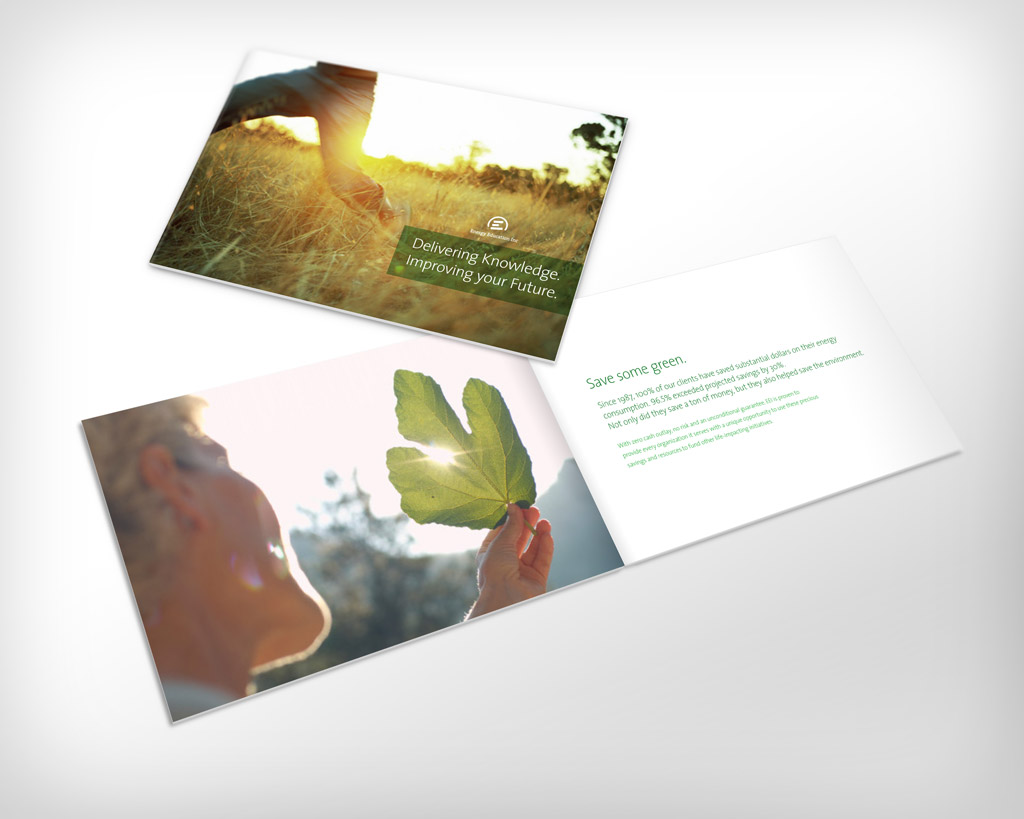 EEI Brochure by TheRyanFord
