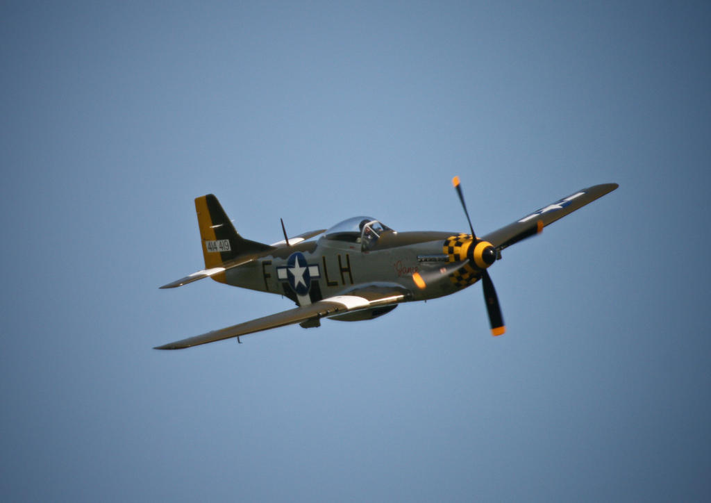 P51 by omey