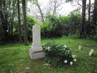 Evans Rd Cemetery 15