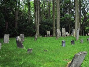 Evans Rd Cemetery 14