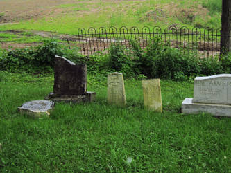 Evans Rd Cemetery 11 by Joseph-Sweet-Stock