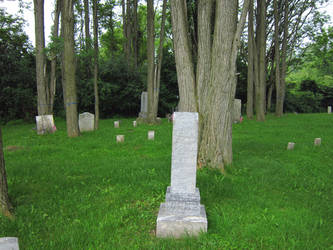 Evans Rd Cemetery 10