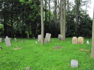 Evans Rd Cemetery 09