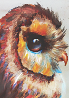 Owl in Color (2013) by Atheyos