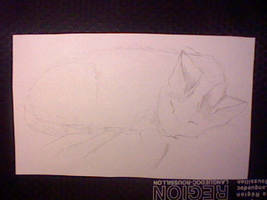 mon chat en dessin by hichigot