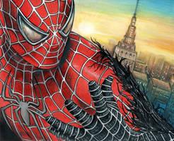 Spiderman. by jasumdeen