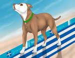 Last Puppy Days - TKC World Dog Show May