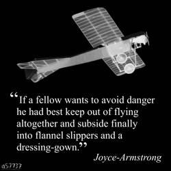 Joyce-Armstrong's advice on flying